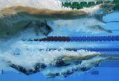 Bagno di medaglie per il Village Nuoto