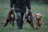 Tutte le date per la caccia in Umbria