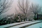 Collazzone: scuole chiuse il 1° marzo