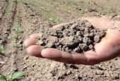 La siccità mette in ginocchio tutta l'agricoltura
