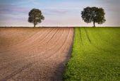 A Todi il punto sulle misure agroambientali