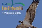 Eurobirdwatch a Casalina ed Alviano