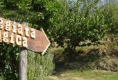 Passeggiata ecologica a Monte Castello di Vibio