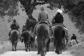 A cavallo fra colline e antiche mura