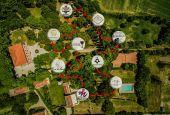 La Meglio Feccia: nove vignaioli resistenti umbri