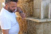 Tour europeo delle case di terra e paglia in Umbria