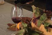 Cantine Aperte per il vino novello