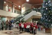 Acceso l'albero di Natale all'ospedale di Pantalla