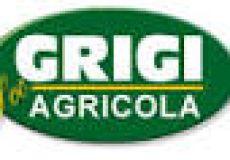 Torgiano: mangimi sempre più Grigi