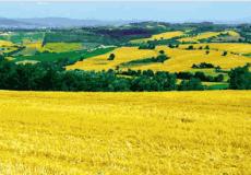 Intorno a Todi: escursioni nei circuiti del paesaggio