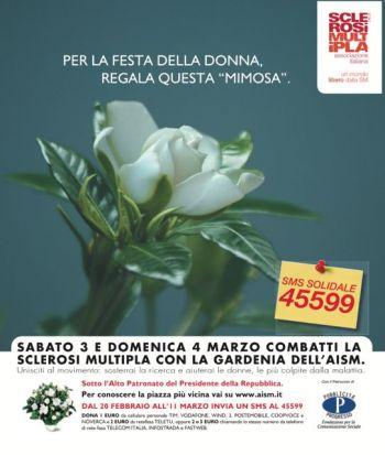 Festa della donna, un vero omaggio: la gardenia dell'Aism