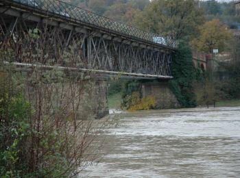 Uno studio di fattibilità per il ponte di Montemolino