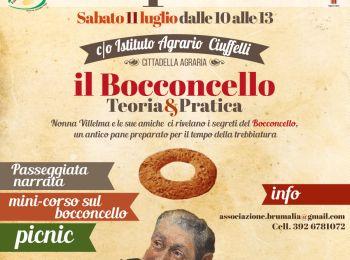 Duello fra pagnotte di Todi ed Orvieto