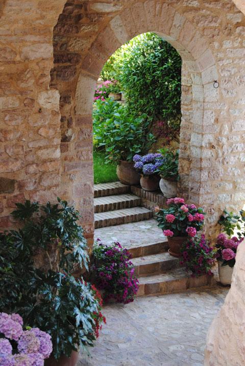 We are todi punta su una citt fiorita tutto l 39 anno for Giardini fioriti tutto l anno