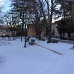 neve-giardini