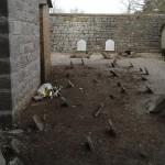 cimitero torregentile3