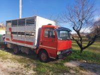 Fiat trasporto animali vivi