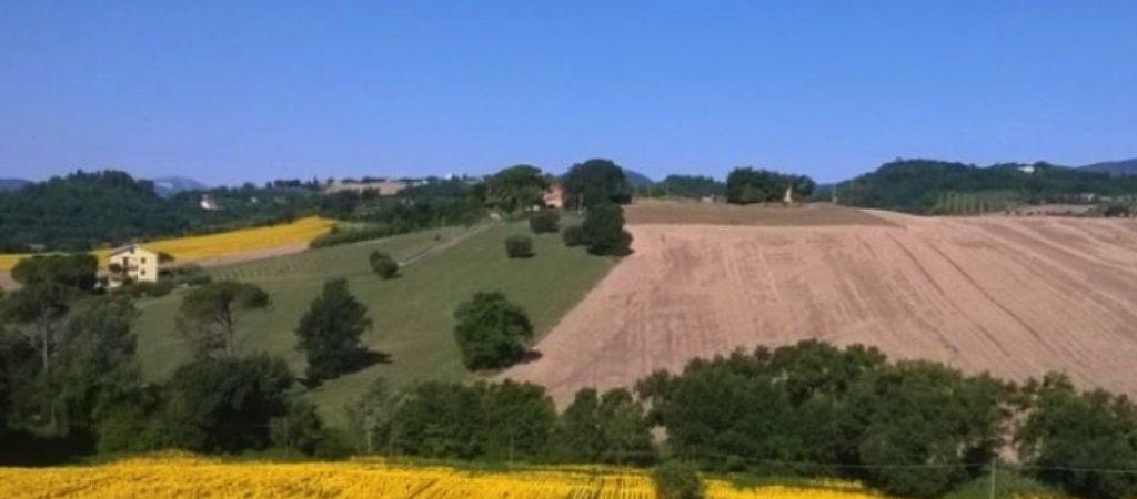 agricoltura ambiente
