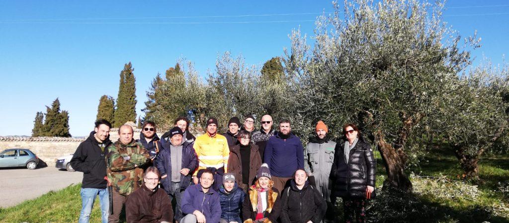 corso potatura olivi todi
