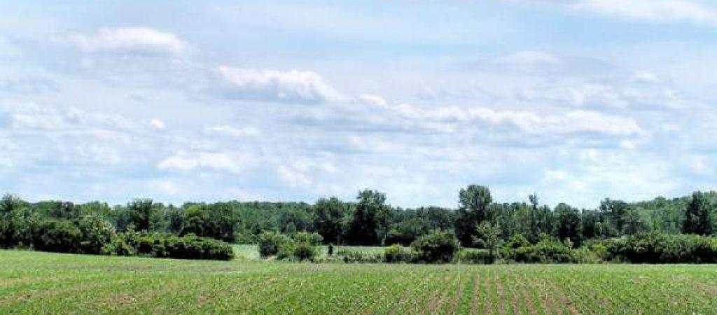 fondi_agricoli