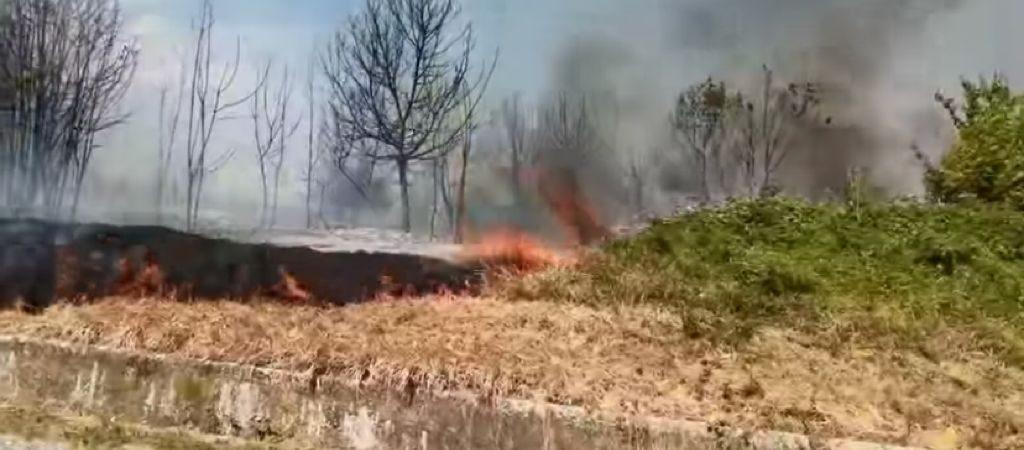 incendio pontecuti