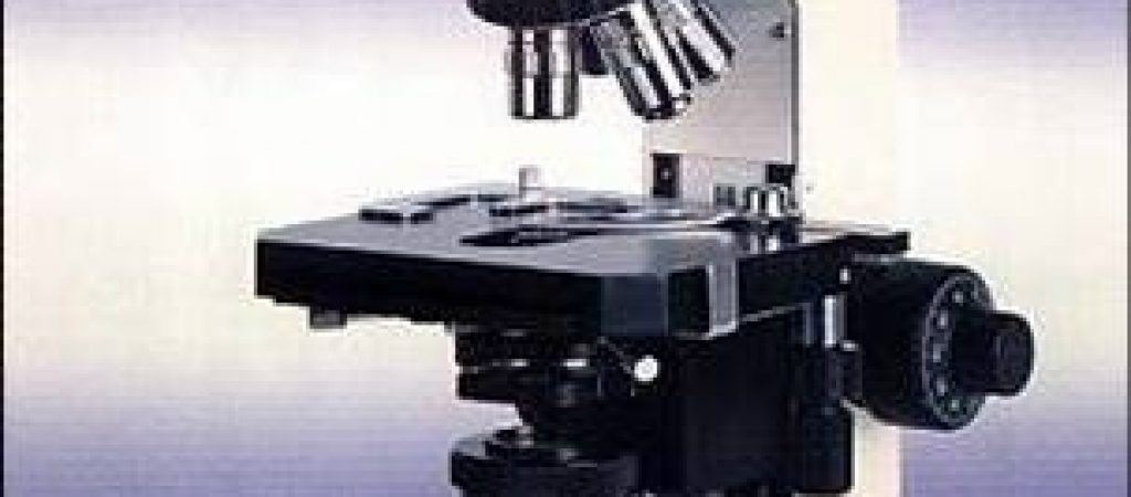 microscopio21