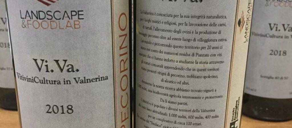 progetto viva viticoltura valnerina